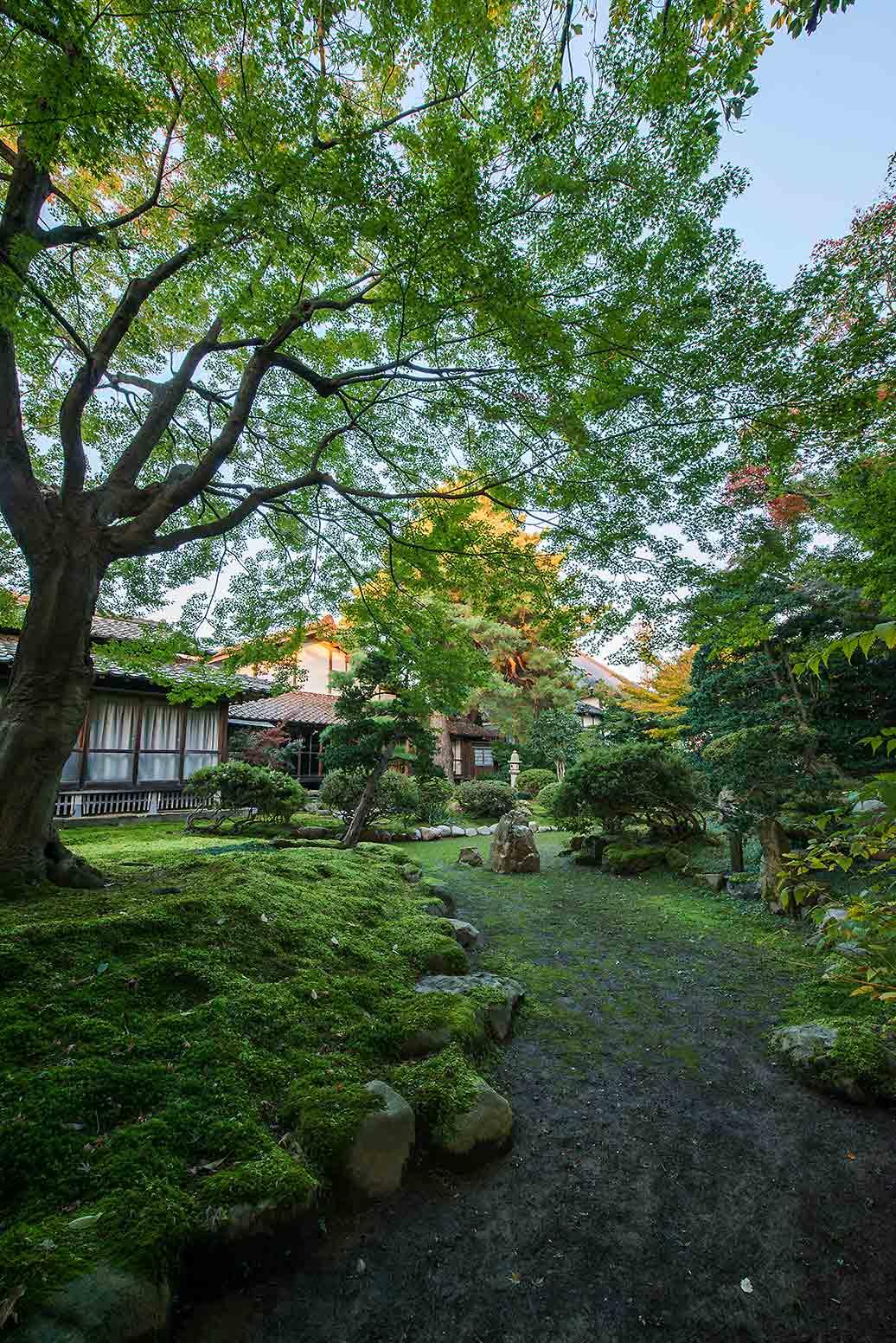 無為信寺の庭園の様子
